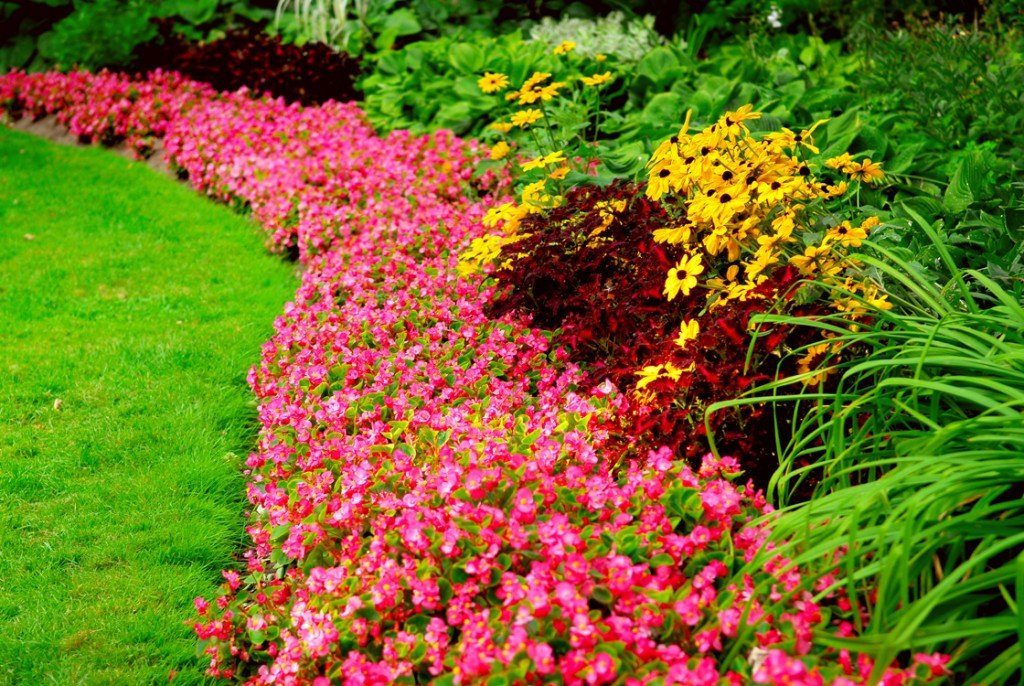 Home Landscaping Pictures home landscaping ideas - resources, pictures & design tips