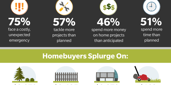 New Homeowner Infographic