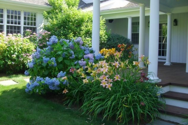 Spring Garden Growing Tips And Suggestions