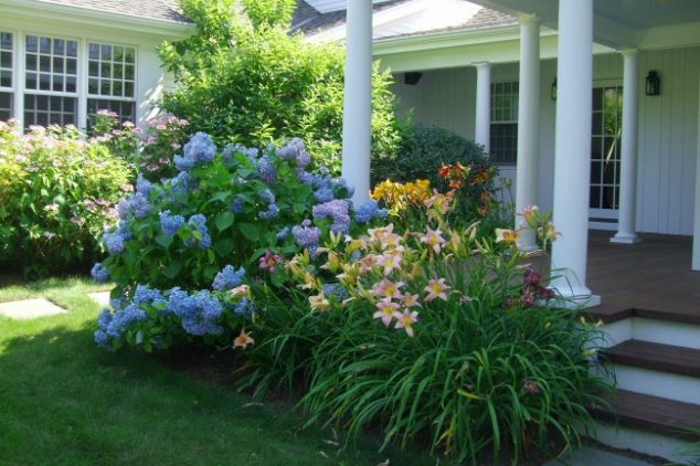 Common Types Of Spring Garden Flowers
