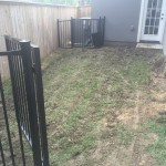 Poorly maintained lawn