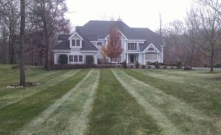 Lawn in need