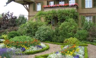 Home landscape