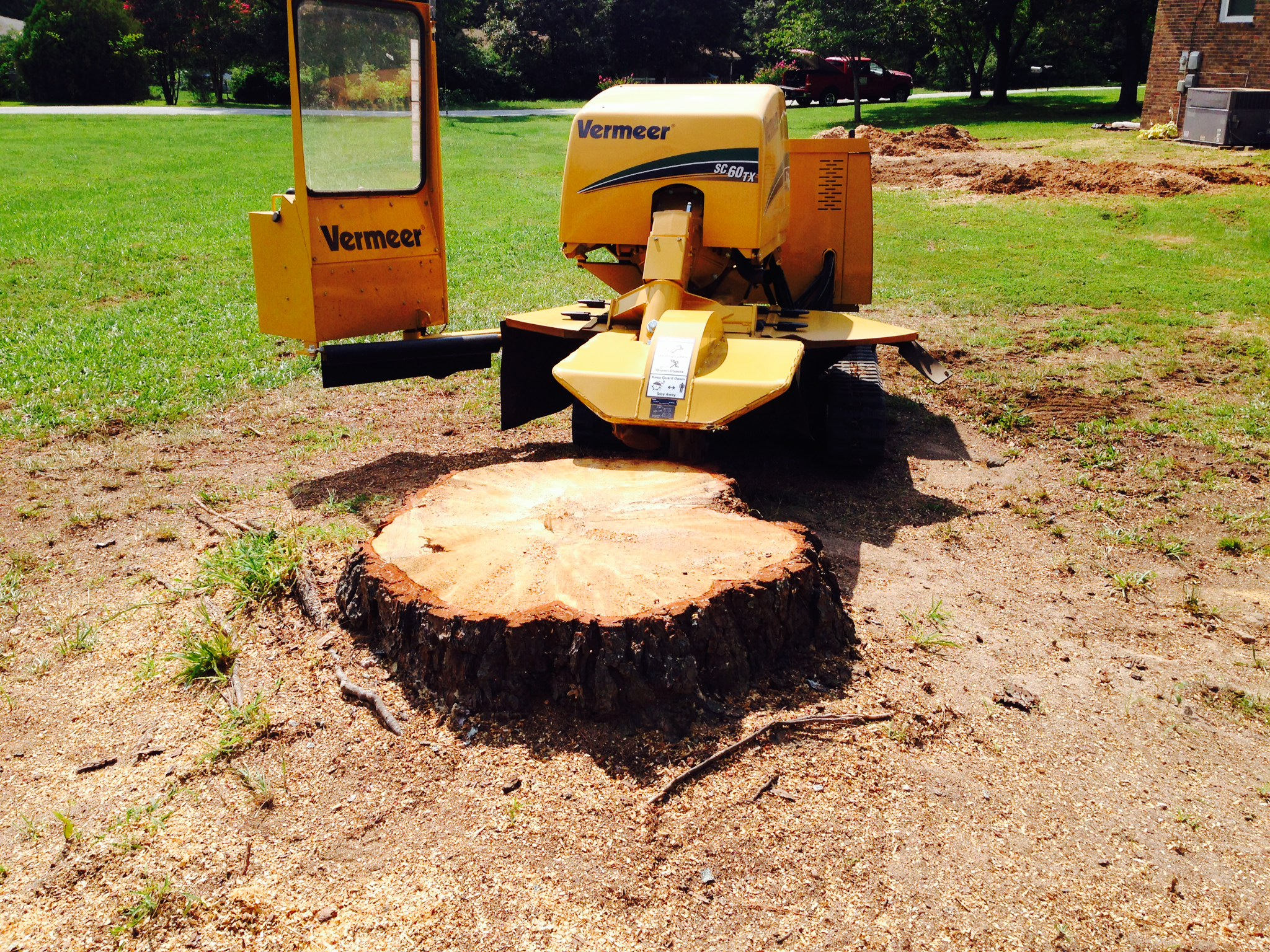 How To Refinish Old Kitchen Cabinets Tree Stump Removal Methods Amp Tips Homeadvisor