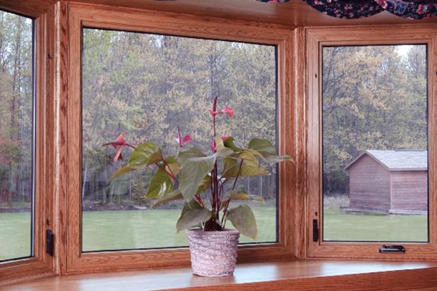 Sealed Window