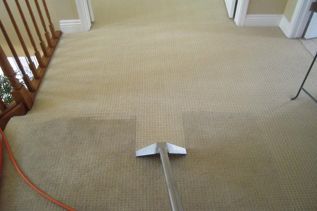 Carpet Being Cleaned