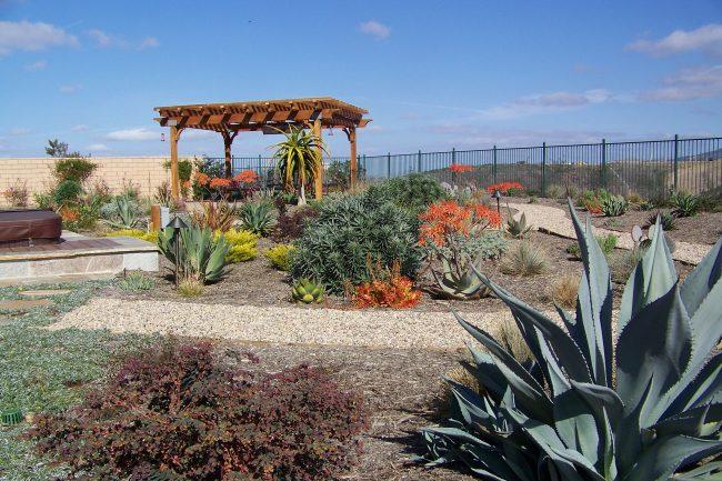 Xeriscape Gardening Amp Landscaping Homeadvisor
