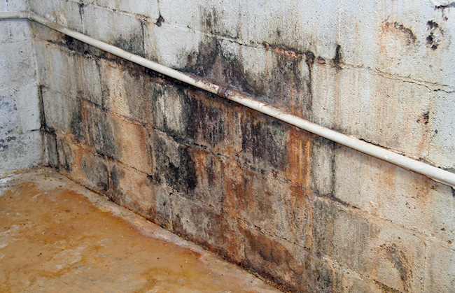 common causes and solutions to help you tackle basement water seepage