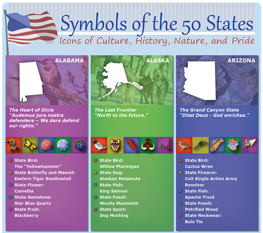 All 50 States Amp Their Symbols Culture Amp Pride Homeadvisor
