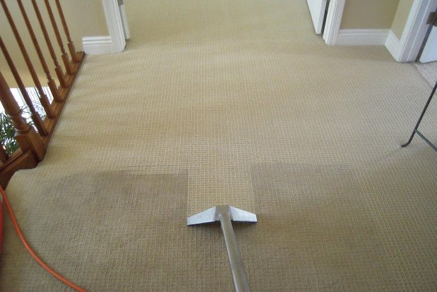Common carpet cleaning shampooing mistakes homeadvisor pros cons and costs carpet cleaning solutioingenieria Gallery