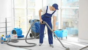 carpet cleaning professional in the home