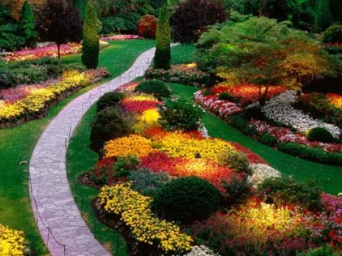 Find And Hire A Gardener What Does A Professional Gardener Do