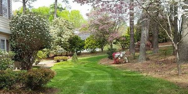 Landscape Maintenance Checklist