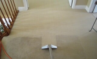Hot Water Extraction for Carpets