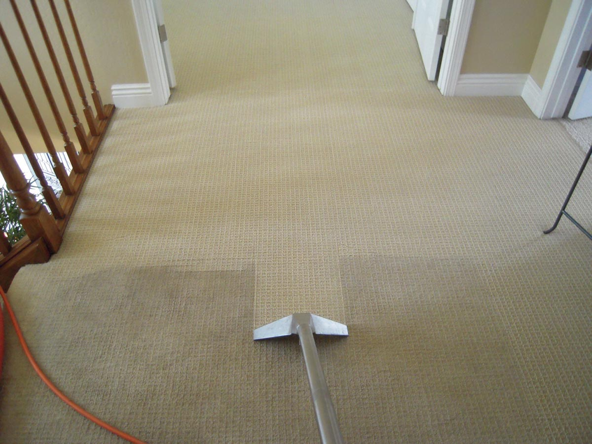 Common carpet cleaning shampooing mistakes homeadvisor hot water extraction for your carpets solutioingenieria Gallery
