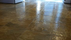 Pros and cons of linoleum floors