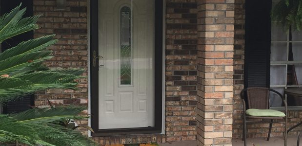 Storm Doors - general info, different types, & local pros