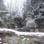 Checklist: Winter Landscape Tips