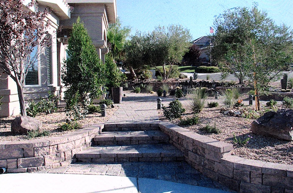 Xeriscaped front yard