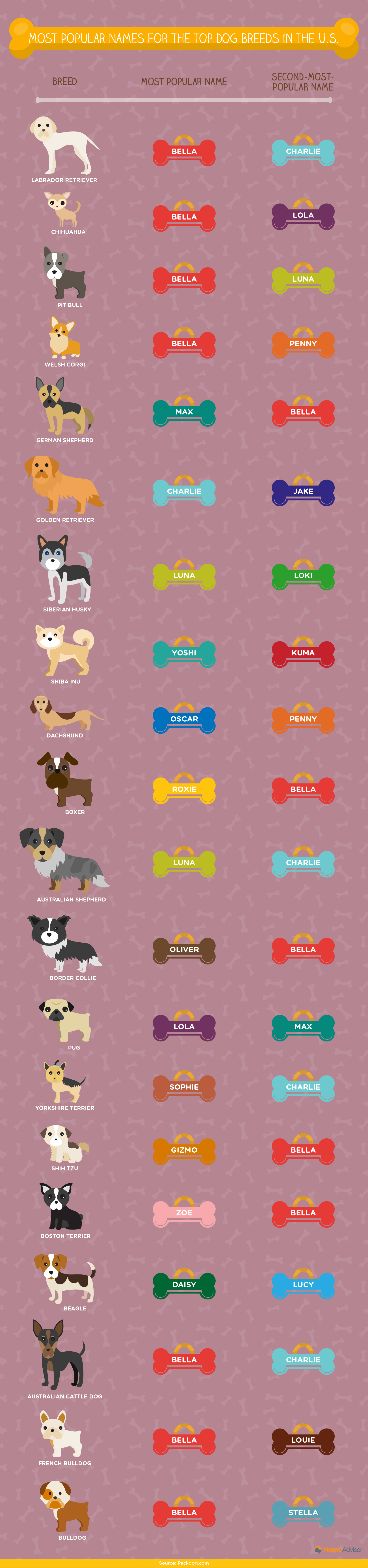 Most popular names by top breeds