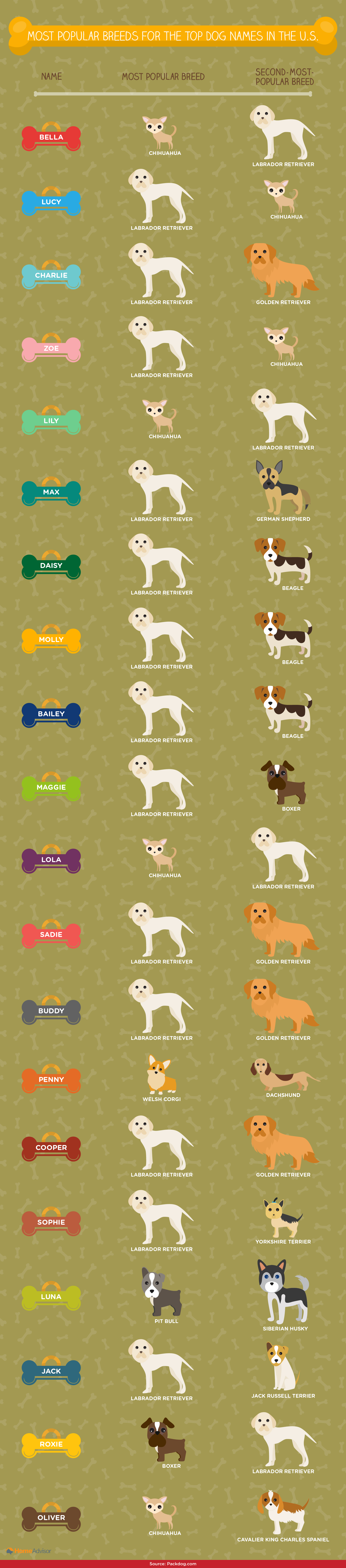 Common names for top dog names
