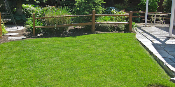 Lawn Irrigation Systems Sprays Rotors And Drips