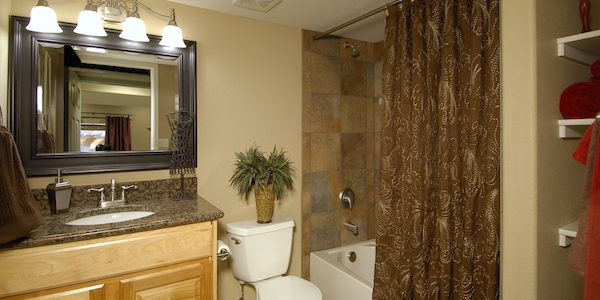 Basement Bathrooms Basement Remodels Classy Basement Bathroom Designs Remodelling