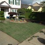 How to Lay Sod – A Complete Guide