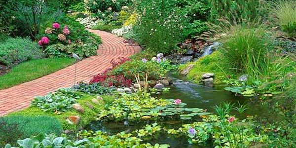 Garden Pond - garden waterfall, liners, design, & installation