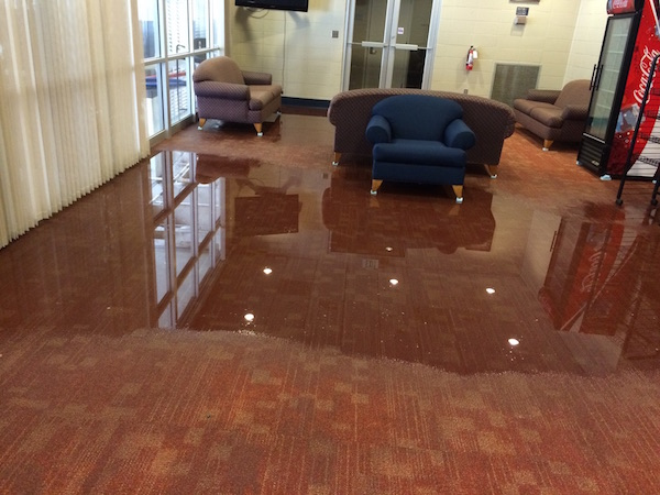 Flood damage repair emergency flood cleanup for Bathroom flooded wet carpet