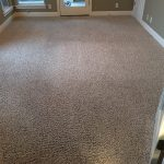 Carpet Cleaning Methods 101