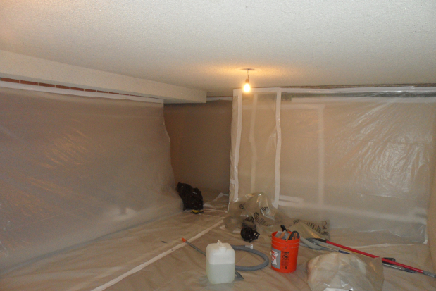 Asbestos Amp Black Mold Removal What Is Involved