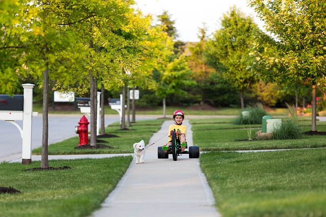 Young boy Walking the Dog with Tricycle in Neighborhood around sunset