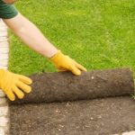 Three Reasons Landscapers Are So Optimistic About Their Business