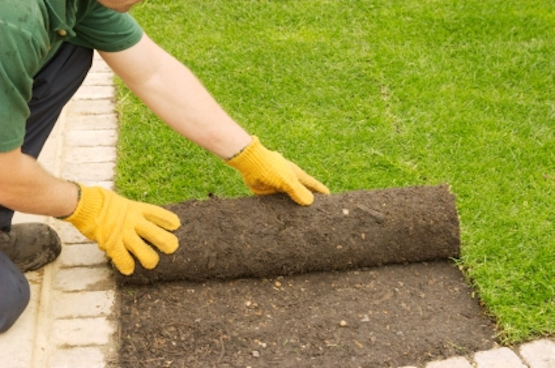 3 Reasons Landscapers Are So Optimistic About Their Business