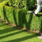 How Much Do Garden and Yard Work Services Cost?