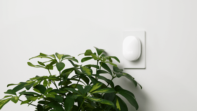 Nest connect hanging unobtrusively on wall