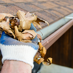 The Basics of Gutters
