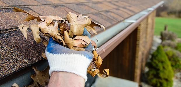 Guttering Basics Preventative Maintenance Materials Etc