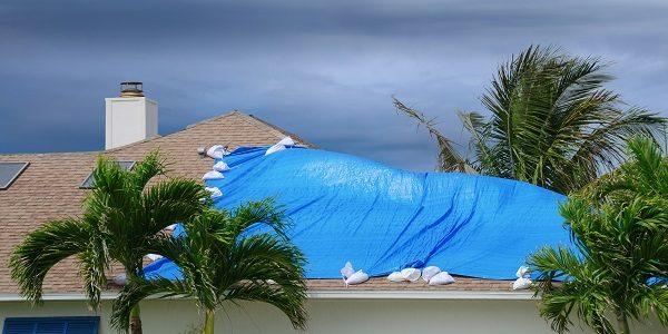 blue tarp on damaged roof