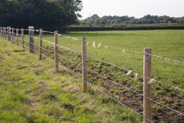 2020 Barbed Wire Fence Prices Cost To Install Per Foot Homeadvisor