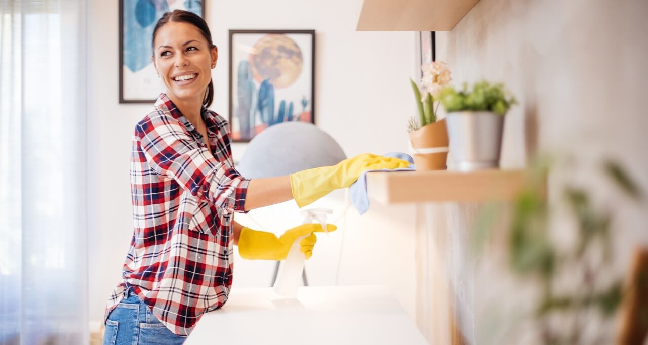 professional cleaner at home