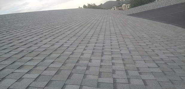 Gray Asphalt Shingle Roof
