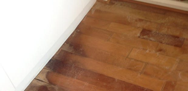 Answers About Cupping Hardwood Floors And A Desiccant Dehumidifier