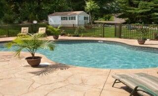 Lush Backyard Swimming Pool