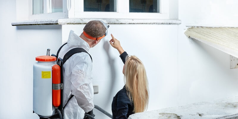 pest expert works with homeowner to find damage