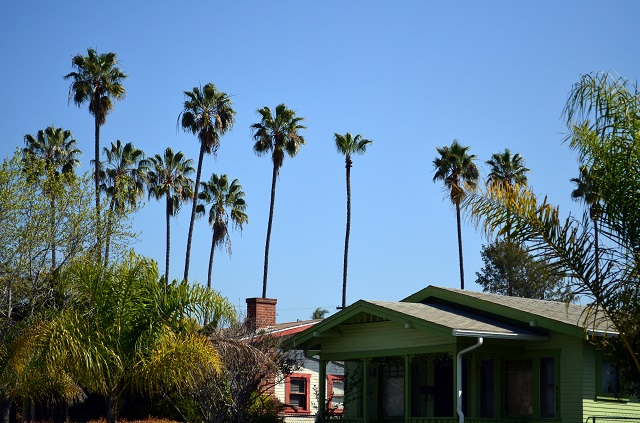 Southern California bungalow with palm trees