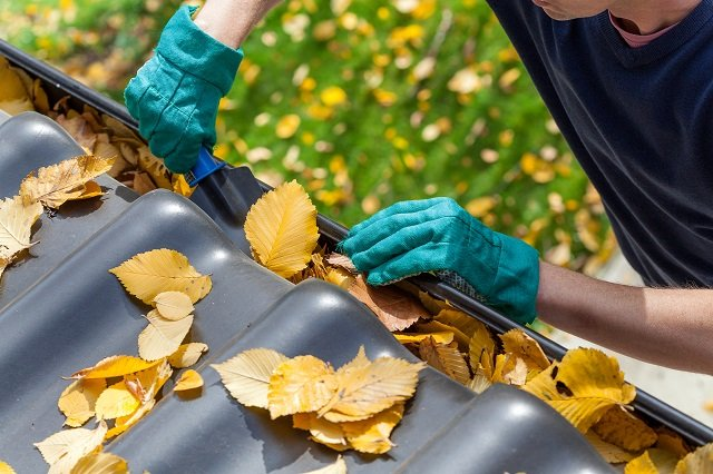 Man with gloved hands cleaning out leaves from a gutter