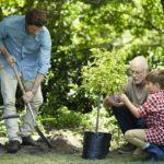Family gardening in in yard