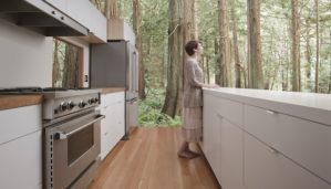 sustainable home cost
